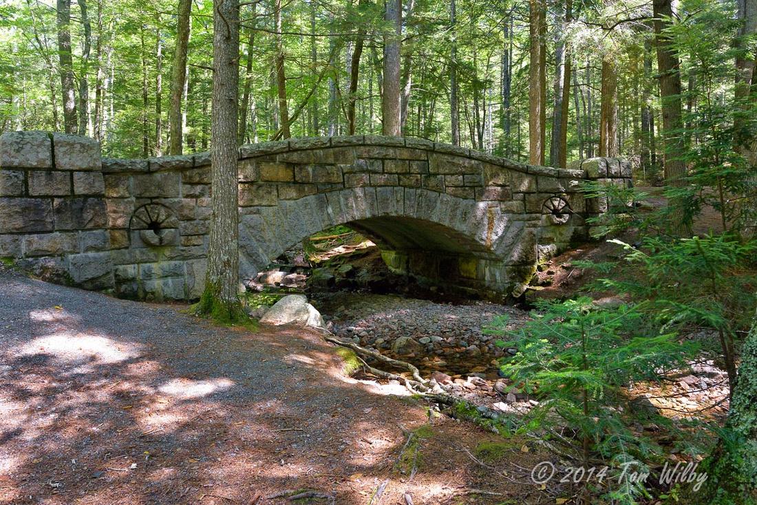 Acadia Nat'l _4607_